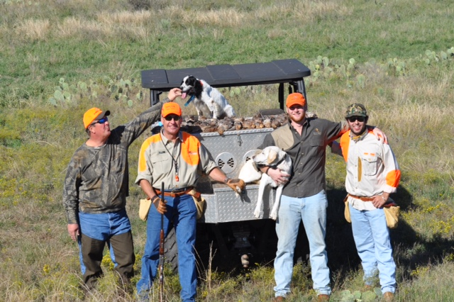 Quail Hunters in Texas